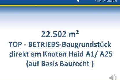 <b>Top-Betriebs-Baugrund - Knoten Haid</b>