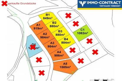 BAUTRÄGER GRUNDSTÜCKE! Zusammenhängende Grundstücke warten auf optimale Bebauung...