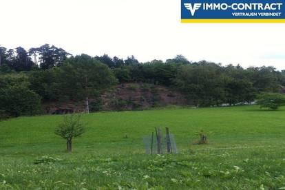 Bauland mit Grünlandanteil zwischen Zwettl und Krems