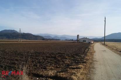 Landwirtschaftsfläche mit Halle/Stall und zwei Baugründen