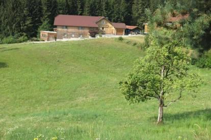 Singles aus Rohrbach in Obersterreich kennenlernen