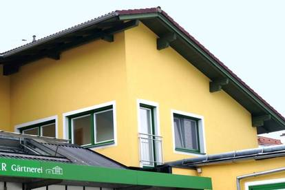 Renovierte 2-Zimmer Mietwohnung