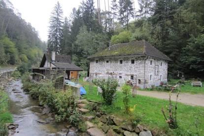 Haus in idyllischer, grüner Lage