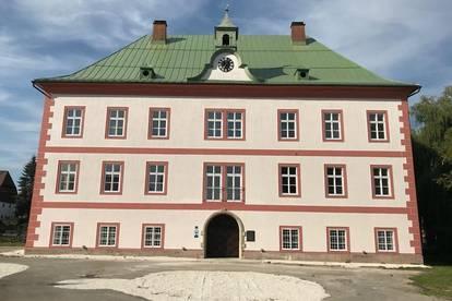 ERSTBEZUG! Exklusive 4-Zimmer Mietwohnung im Schloss Frein