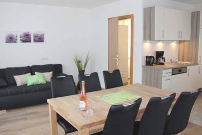 Modernes Haus mit 2 Appartementwohnungen in den Kitzbüheler Alpen