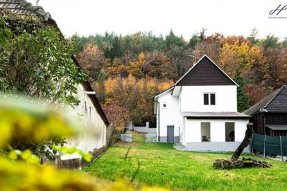 minimalistischer Luxus in Einfamilienhaus am Waldrand