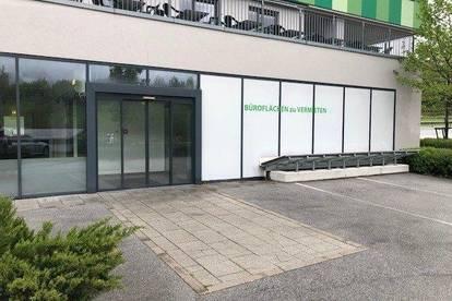 Geschäfts-/Bürofläche in Puch Urstein zu vermieten