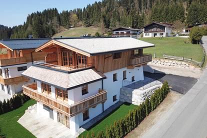 Schönes Tiroler Chalet in sonniger Hanglage ( 2019-02979 )