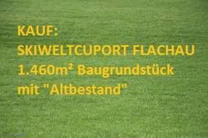 """NEUER PREIS: KAUF SKIWELTCUPORT FLACHAU: 1.460m² Baugrundstück mit """"Altbestand"""""""