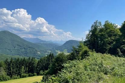 Natur pur so weit das Auge blickt - Grundstück auf 980 m ü.M. in unverbaubarer Panoramalage nahe Salzburgs