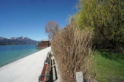 Privilegiert Leben im Salzkammergut! Dank privater Liegewiese mit Seezugang und Steg