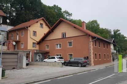 2 Mehrfamilienhäuser mit 6 Wohneinheiten und Nebengebäude