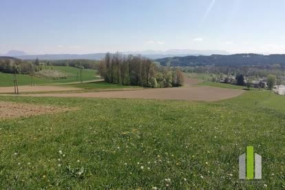 Landwirtschaft mit ca. 11,5 ha arrondierter Fläche zu verkaufen !!