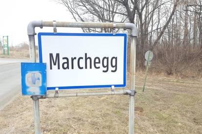 Marchegg: Großzügiges Baugrundstück in bester Lage!