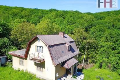 Mitten im Wald und trotzdem an der Grenze zum Wiener Stadtgebiet - großes südseitiges Baugrundstück in Ruhelage