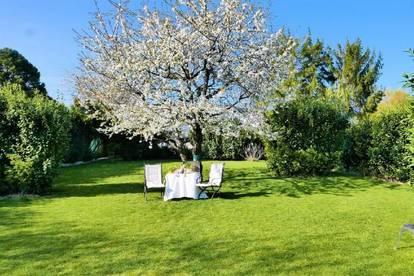 3899 - Moderne Stadtvilla mit herrlichem Garten