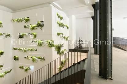 Top 0.1 – Terrassenwohnung für Raum mit Ideen