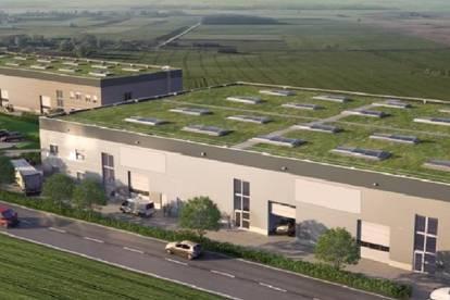 Hochwertige Gewerbehalle - Mietfläche flexibel einteilbar: 450m²-3000m²