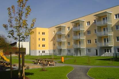 Geförderte 3-Zimmer Wohnung in Linz zu vermieten!