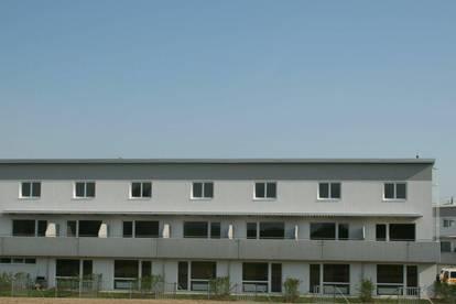 Geförderte 4 Zimmer Maisonette Wohnung in Loosdorf – ein Traum für Familien