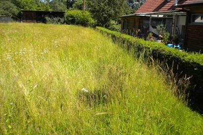 Bungalow möglich! Ebenes, aufgeschlossenes Grundstück in sonniger Siedlungslage