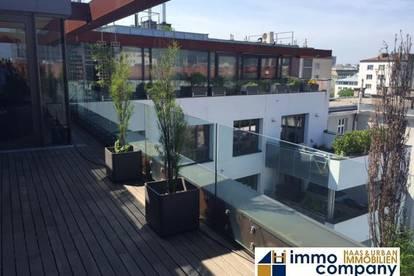 Extravagantes loftartiges Terrassen-Penthouse