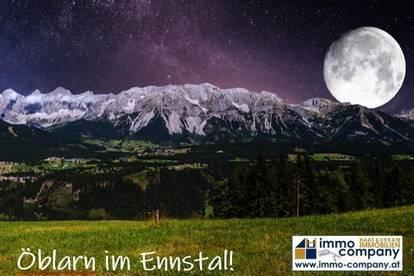 Steiermark, Bezirk Liezen, Öblarn, Eigentumswohnung ab 57,51 m²