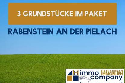 Rabenstein an der Pielach - Drei Grundstücke | Panoramablick | Waldrandlage