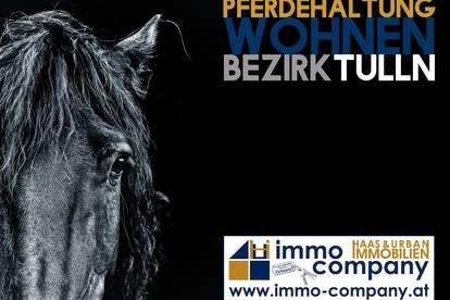 Pferdehaltung und Wohnen | Enormes Potential | Bezirk Tulln