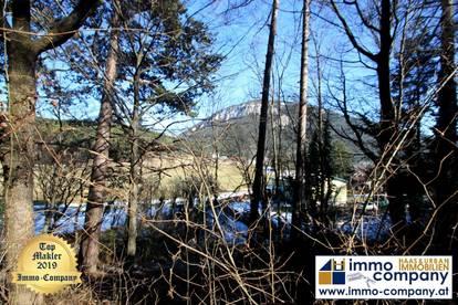 !!! NEUER PREIS !!! *** Ternitz - Sieding *** Baugrund mit Bergblick und Altbaumbestand in ruhiger Lage !