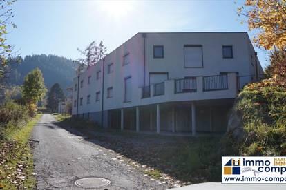 Industriegrundstück mit ca. 20.000 m² im Bezirk Leoben