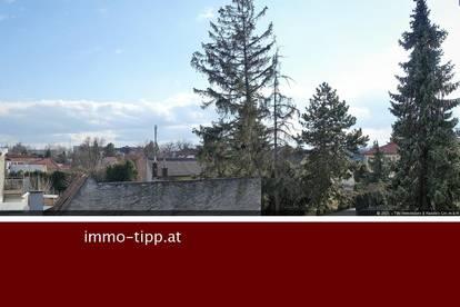 Leobersdorfer Grünruhelage! Geräumige 3-Zimmer Eigentumswohnung mit sonnigen Balkon