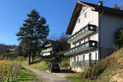 Weingut mit Buschenschank, Gästehaus und Privathaus in Gamlitz, Südsteiermark