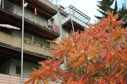 Gemütliche Zwei-Zimmer-Wohnung mit Balkon!Provisionsfrei!