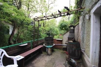Weinkeller (Gewölbe) in sehr gutem Zustand in Stammersdorfer Heurigengegend!