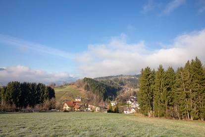 Wolfsberg ST. JOHANN | Baugrundstück mit 2ha Nutzfläche in Stadtnähe