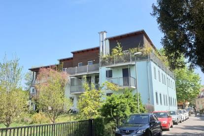 Schöne 3-Zimmer-Wohnung (getrennt begehbar) mit 3 Terrassen - Top 8 - Marktgasse 11