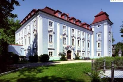** AB SOFORT ** - Freistellplatz beim Schloss Lichtenegg