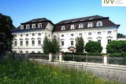 PKW Abstellplatz im Schloss Traunegg - Top P028 unbefristet ab sofort zu vermieten