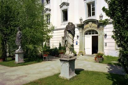 ** AB MITTE DEZEMBER ** Gemütliche Galeriewohnung im Schloss Traunegg mit neuer Küche