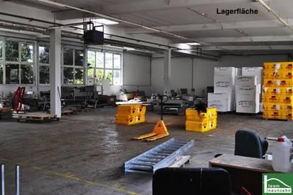 Lager-, Werkstatt-, Geschäfts- bzw. Büroflächen zur Vermietung!! 25€ Netto/Monat! 10m2 - 1500m2!Gewerbepark Donnerskirchen!