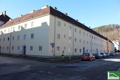 Sanierte-, Erstbezugs-, 2-4 Zimmer-Wohnungen in Grünruhelage