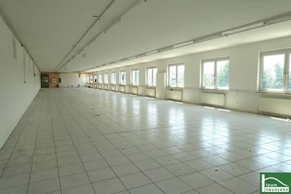 !!!GEWERBEPARK DONNERSKIRCHEN! Bürofläche mit 450m2! Gepflegter Zustand! Stellplätze!!!