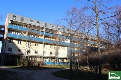 Nähe Triester Straße! Helle und Geräumige 3-Zimmer-Wohnung! Charmante Genossenschaftswohnung!