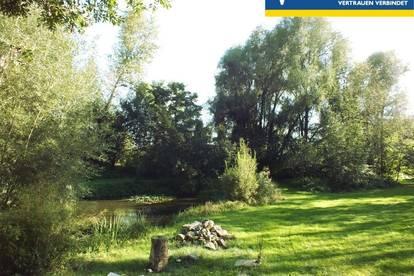 Freizeit-Grundstück mit Naturteich und Wald