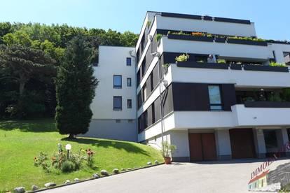 Vollmöblierte Mietwohnung Bezirk Mödling-34m²