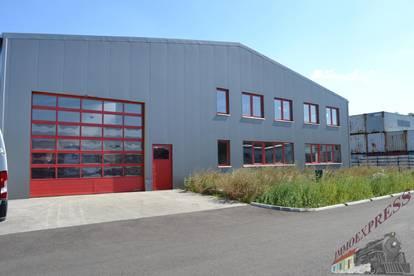 Sehr gut gelegene Halle und Büro in Margarethen am Moos zu mieten