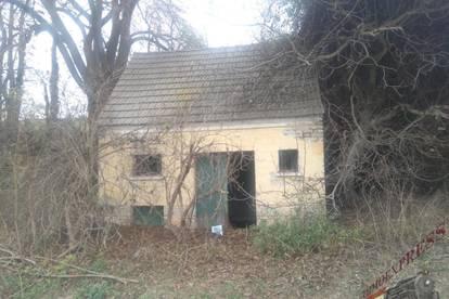 Presshaus bei Waidendorf