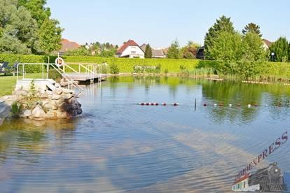 Sehr gut gelegene helle Wohnung beim Schwimmbiotop in Fischamend mit Investablöse VB 3.500,--