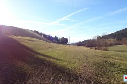 Landwirtschaftliche Fläche Guttaring